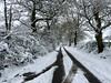 Snow Road (Heaven`s Gate (John)) Tags: snow road winter trees landscape car tracks tyre tire johndalkin heavensgatejohn braggsfarmlane solihull england