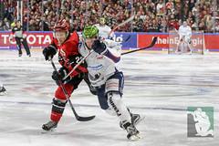 DEL2018-6.jpg (sushysan.de) Tags: bundesliga del deutscheeishockeyliga eishockey iserlohn iserlohnroosters kec köln kölnerhaie lanxessarena pix pixsportfotos roosters saison20172018 pixsportfotosde sushysan sushysande
