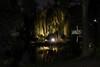 Treurwilg by night (wibra53) Tags: 2017 nachtopname nightshot treurwilg weepingwillow wilg