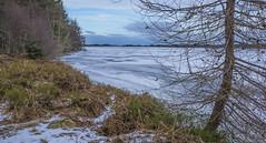 Loch Ashie (prajpix) Tags: ice icy freeze frozen freezing cold blast water loch reservoir invernesshire highlands scotland