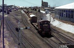 J531 TA1808 shunting Bunbury (RailWA) Tags: railwa philmelling joemoir westrail ta1808 shunting bunbury