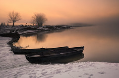 _DSC1457 (silviu_z) Tags: sunrise paisaje naturaleza nature outdoor river sony ilce7rm3 1635oss landscape waterscape water snow winter frog morning tree amateur