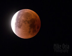 Super Blue Blood Moon-apalooza (mikeSF_) Tags: select