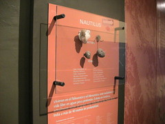 Chiapas (Tuxtla Gutierrez-Museo de Paleontologia) (t_alvarez07) Tags: chiapas tuxtla gutierrez museo de paleontologia cultura arte