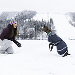 playing with a dog in Tahko thumbnail
