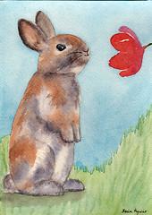 Watership Rabbit (Sonia Aguiar (Mallorca)) Tags: rabbit watership watercolor watercolour acuarela aquarell aquarelle