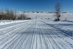 A Beautiful Day for A Drive (murph le) Tags: beautiful day drive winter road snow alberta field trees landscape light blue