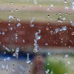 Cold Outside (53/365) thumbnail