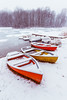 cold days (thethomsn) Tags: winter lake germany boat canoe red yellow color forest outdoors thethomsn pier jetty cold frost