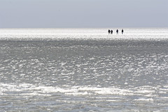 Ice Walkers (Alfred Grupstra) Tags: sea beach nature outdoors winter water people men wave day coastline snow vacations coldtemperature sky scenics sand ice
