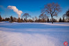Evening at a park 2 (Kasia Sokulska (KasiaBasic)) Tags: canada alberta edmonton rundle park winter evening snow trees landscape cold river valley