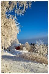 Nannestad 9. januar 2018 (#3) (Krogen) Tags: norge norway norwegen akershus romerike nannestad winter vinter landscape landskap krogen fujifilmx100