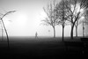 A stroll in the fog. (jlee31180) Tags: fog vancouver fujifilm xe1 killarneypark street
