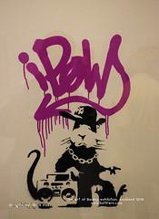 Rats and monkeys are Banksy's one of the most favourite subjects. Gangsta Rat (Dark Pink). 2005 (softferncom) Tags: auckland banksy sergiybondar theartofbanksyexhibition girlandballoon laughnow girlwithredballoon happychopper pulpfiction trolleyhunters rudecopper katemoss flag loveisintheair stevelazarides famousgraffiti banksy'siconicworks
