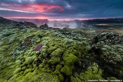 Lave Fields (skarpi - www.skarpi.is) Tags: iceland highlands island moss lava hot lave volcano crater skarpi arctic arcticexposure travelagency night