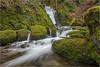 The Alva Waters (Douglas Hamilton ( days well spent )) Tags: alva glen gorge hillfoots clackmannanshire scotland ravine moss burn waters nikond5200 douglas hamilton long exposure landscape falls rocks