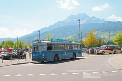 Autobus Nr. 81 Swiss Classic World 2017 (vbl-historic) Tags: autobus dieselbus bus fbw hess b71u 1955 allmend extrafahrt sonderfahrt vblhistoric vbl verkehrsbetriebe luzern shuttle swissclassicworld historisch vintage
