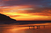 4  3  1  x  2 (rockinmonique) Tags: mazatlan mexico viewfromourhotelroom beach ocean sunset seaguls reflection red orange yellow blue pink purple moniquew canon canont6s tamron copyright2017moniquew