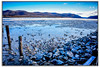 Ducks in icy waters (jsleighton) Tags: hudson river ducks birds ice mountains winter landscape