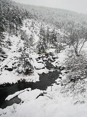 Strmenica 070 (jecadim) Tags: strmenicazima winter snow mountain serbia srbija hiking trekking forest