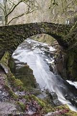 The Hermitage at Dunkeld (rjonsen) Tags: scotland river water waterfall fall bridge long exposure tripod alba motion blur