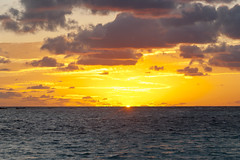2017-04-22_05-50-19 Golden Dawn (canavart) Tags: sxm stmartin stmaarten fwi caribbean sunrise dawn orientbeach orientbay beach morning