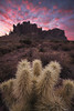 Superspikes (bryanchong.photo) Tags: superspikes superstition mountains lost dutchman state park sunrise clouds morning light landscape cholla cactus burn color sky sony alpha a7rii 1635 wide angle outdoor nature