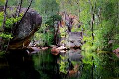 Motor Car Creek (Louise Denton) Tags: kakadu national park wet season australia darwin nt northern territory creek green light tropical rainforst monsoon forest rock motorcarfalls waterfall water