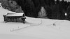 The choice (Peter Hungerford) Tags: skiing monochrome snow hut light tree