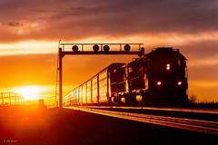 ATSF 5836 West at Dennison, AZ (thechief500) Tags: arizonadivide bnsf railroads seligmansubdivision dennison az usa us heidelbergtango