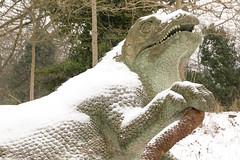 Iguanodon | CP Snow | Feb 2018-66 (Paul Dykes) Tags: london england unitedkingdom gb crystalpalace uksnow londonsnow uk crystalpalacepark