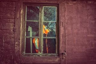 Windows...