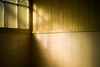 winter light (N.sino) Tags: m9 ultron35mmf17 bathroom light window winterlight 風呂場 風呂 タイル 前川邸 江戸東京たてもの園