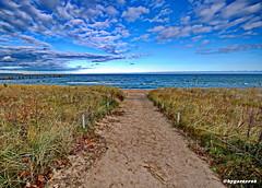Ostsee (garzer06) Tags: wolken göhren deutschland mönchgut mecklenburgvorpommern ostsee blau weis grün wolkenhimmel landschaft vorpommern landschaftsfoto landscapephotography inselrügen landschaftsbild insel vorpommernrügen rügen landschaftsfotografie