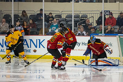 "2018 ECHL All Star-1124 • <a style=""font-size:0.8em;"" href=""http://www.flickr.com/photos/134016632@N02/38887869735/"" target=""_blank"">View on Flickr</a>"
