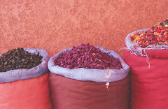 Spices (thecuriousdead) Tags: morocco aftrica souk marrakech november 35mm film canon colourprocess oldfilm negatives documentary