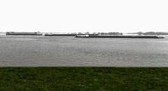 Schifffahrt... (st.weber71) Tags: rhein rheinland rheinufer niederrhein nikon d850 ufer wiese schiffe schifffahrt colorkey flus art nrw germany deutschland outdoor wasser himmel