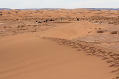 Marokko Dez17 Jan18 216 (izzaga) Tags: marokkodez17jan18 sand dunes desert sahara morocco maroc