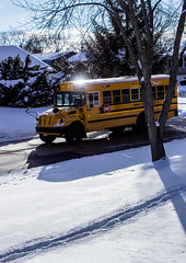 School Bus in the Snowy Winter (Alex Wilson Photography) Tags: feet foot snow snowy sky light lights clouds cloud tree trees green brown school bus bussing yellow red sign street road fence fencing shadow shadows window windows screen shade black white color