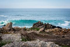 2018-Jan-California-943 (4x4Foto) Tags: 2018 bigsur california deetjensrestaurant emeraldbay january montereybay pacificcoasthighway pacificgrove pacificocean southlaketahoe flowers ocean plants rocks sunset sunshine surf surfing travel trees waves virginia unitedstates
