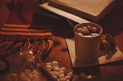 2018P52-5: Winter (kurtrank) Tags: hotchocolate reading warm scarf marshmallow mug cookies book winter