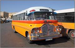 EBY565  Malta bus            (IMG_5309BU63} (Gerry McL) Tags: malta bus gauci maltesedocks perkins bedford eby565 valletta 88 yellow