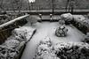 _DSC3824_DxO (Alexandre Dolique) Tags: d850 nikon etampes sous la neige under snow alexandre dolique