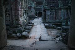 Vestiges of the Khmer (preze) Tags: taprohm tombraidertemple angkor siemreapprovince kambodscha cambodia südostasien stone steintempel templeruin tempelruine sandstein hinduism hinduismus khmer devatas devata