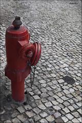IMG_5693 (LIEBER.) Tags: lisboa boca de riego agua rojo