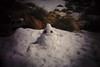 SAM_2541 (Al Glez) Tags: crappy crap tumblr pint snowman