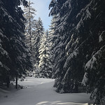 Harz-Oderbrueck_e-m10_1012063885 thumbnail