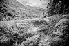 _DSC1770 (Dan Kistler) Tags: nepal annapurna fishtail mountains