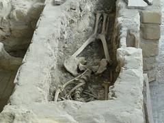 Roman Villa at Moncaret 2013 (~ l i t t l e F I R E ~) Tags: moncaret matecoulon dordogne roman villa stpeters chruch excavations floor mosaic ruins discovery house chateaumatecoulon montcaret velines