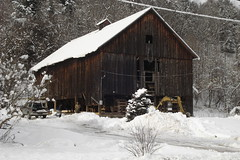 Old Barn (witajny) Tags: winter seasons forest frost building wooden oldbuilding oldbarn barn snow white trees landscapes nature vermont wood roof road tree winterlandscape